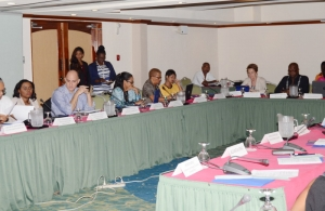 Meeting of CARIFORUM Civil Society Organisations Preparatory to the Second Meeting of the CARIFORUM-EU Consultative Committee, 16-17 February 2016, Barbados