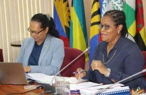 Programme Manager, Culture and Community Development at the CARICOM Secretariat Dr. Hillary Brown (r) and Deputy Programme Manager, Culture Ms. Riane DeHaas Bledoeg at the meeting